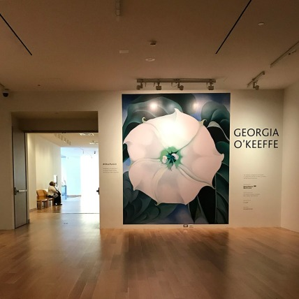 2 Art Gallery of Ontario